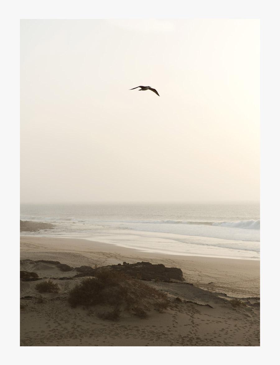 Becca-Horn-Fuerteventura-23